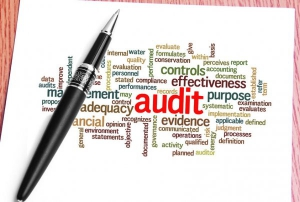 Audit wordcloud impage and click through to enquiries